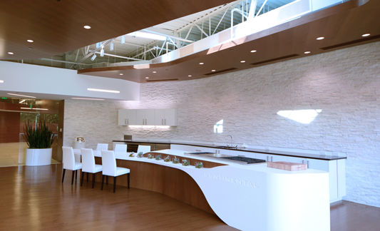 Continental-Services-Dining-533x324