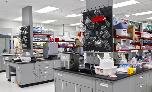 IMRA-Laboratory-3_533x324